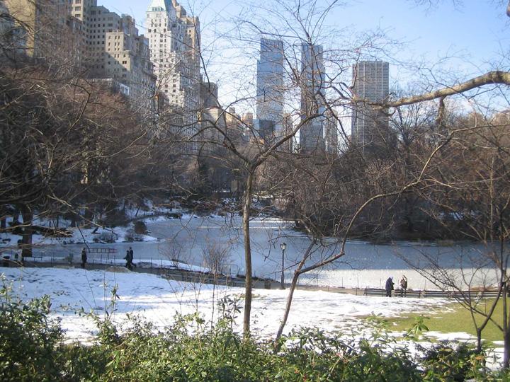 Frozen-Lake-Central-Park