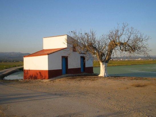 on the Delta, Ebro river, Spain